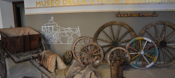 museo web DSC_0870