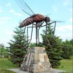 scultura-zanzara-gigante