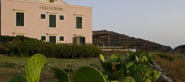 cantina pantelleria2
