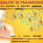 slide legionella (1)