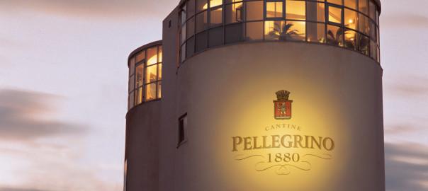 PELLEGR2