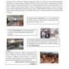 articoli giugno