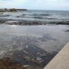 Le alghe, annoso problema di Marinella di Selinunte